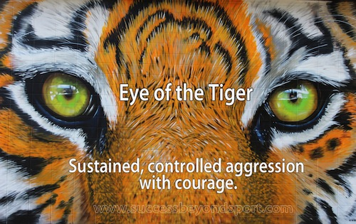 Eye of the tiger - sustained, controlled aggression with courage - Success beyond Sport